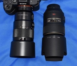 SEL90M28GとAF-S VR Micro-Nikkor 105mm f/2.8G IF-ED